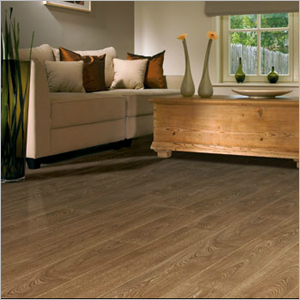 discount carpet outlet laminate flooring warrngton