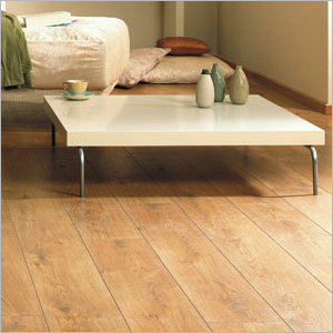 Discount carpet outlet laminate flooring warrngton for Laminate flooring merseyside